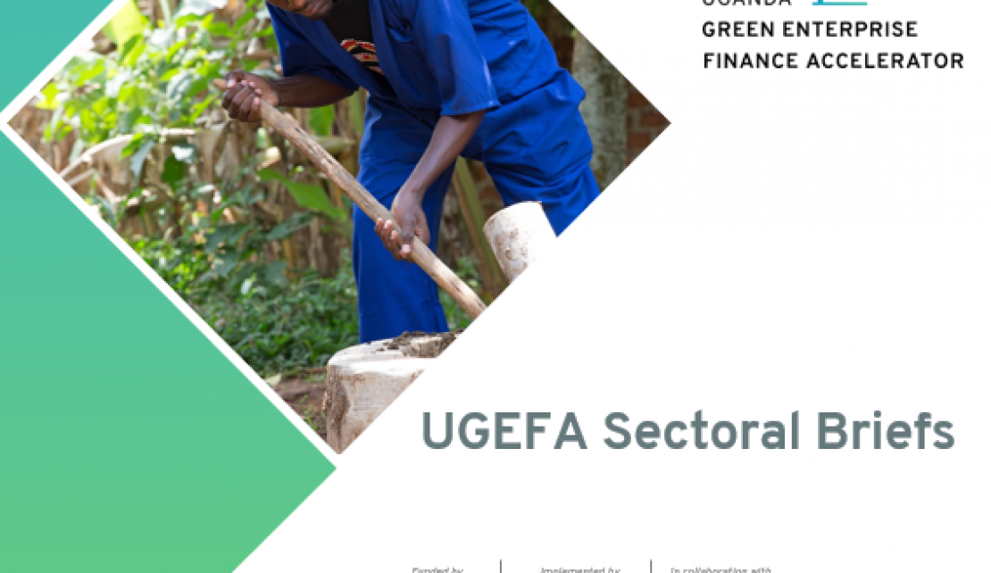 Insights into green sectors with the UGEFA Sectoral Briefs